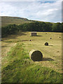 SD8388 : Baled grass crop, lower Widdale by Karl and Ali