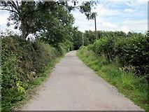 SJ5249 : Footpath to Grotsworth Lane by Jeff Buck