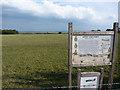 SZ4097 : Needs Oar Point airfield site by Richard Croft