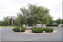 TL4661 : Tidy roundabout by Sandy B