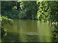 SU9941 : Winkworth lake by Alan Hunt
