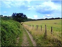 SU7089 : The Chiltern Way near Maidensgrove by Des Blenkinsopp
