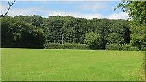 SO6463 : Field, Stoke Bliss by Richard Webb