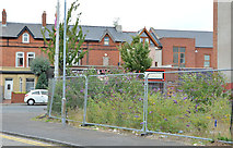 J3673 : Vacant site, Beersbridge Road, Belfast (August 2013) by Albert Bridge