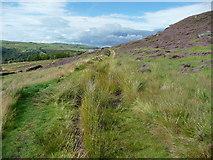SE0511 : The Colne Valley Circular Walk by Humphrey Bolton