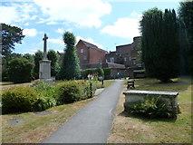 TQ1649 : Path in St Martin's churchyard by Basher Eyre