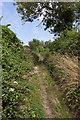 SU6614 : Horsepost Lane by Peter Facey