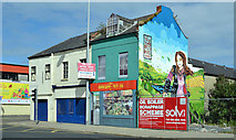 J3674 : Vacant shops near the Holywood Arches, Belfast (2013) by Albert Bridge