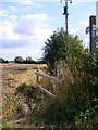 TM3069 : Footpath to Mill Road by Adrian Cable