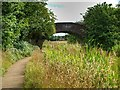 SD7908 : Rothwell Bridge by David Dixon