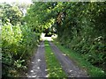 H1710 : Secluded road, Carrickmakeegan by Kenneth  Allen