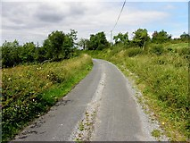 H1617 : Road at Bonebrook by Kenneth  Allen