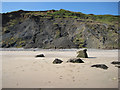 TA1475 : New Closes Cliff, Speeton Sands by Pauline E