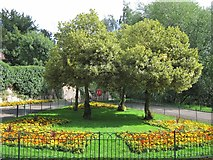 SO5139 : Garden by Victoria Bridge by Oast House Archive