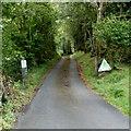 SN9722 : YHA access road to Llwyn-y-Celyn hostel by Jaggery