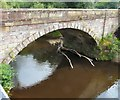 SJ8990 : Last bridge over the Goyt by Gerald England