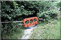 "SY8780 : Tyneham ""Woodland Walk"": closed by Jim Champion"