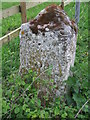 TM1469 : Old Guide Stone by Keith Evans