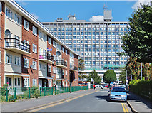 TA0828 : Linnaeus Street, Kingston upon Hull by Bernard Sharp