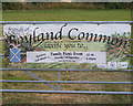 TM0884 : Boyland Common Event Poster by Adrian Cable