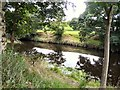 SJ9395 : River Tame by Gerald England
