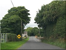 H9612 : Approaching Ballybinaby Cross Roads from the direction of Shortstone West by Eric Jones