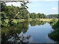 TQ0457 : River Wey Navigation by Alan Hunt