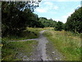 ST0096 : Riverside track junction near Ferndale by Jaggery