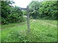 TQ2255 : Old signpost on Banstead Heath by Marathon