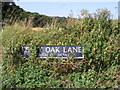 TM2699 : Leafy Oak Lane sign by Adrian Cable