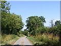 TM2699 : Grub Street, Shotesham by Geographer
