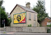J3873 : Derelict house, Knock, Belfast (2013-1) by Albert Bridge