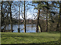 SP0466 : Lodge Pool from the southeast, Lodge Park, Redditch by Robin Stott