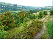 SE0813 : The Colne Valley Circular Walk by Humphrey Bolton
