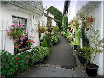 SD3598 : Floral Passageway in Hawkshead by Chris Heaton