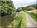 NZ1759 : Derwent riverside walk, Gibside by David P Howard