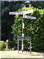 TM3394 : Roadsign on Toad Lane by Adrian Cable