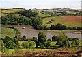 SX8258 : River Dart above Sharpham by Derek Harper