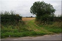 SE3982 : Footpath off Sandhutton Lane by Bill Boaden