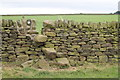 SE2501 : Stone stile on Roughbirchworth Common by Dave Pickersgill