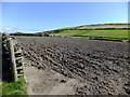 SC1867 : Ploughed field at Cregneash by Richard Hoare