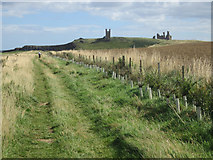 NU2422 : Footpath towards Dunstanburgh Castle by Graham Robson