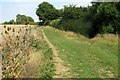 SP9945 : Footpath by Wootton Wood by Philip Jeffrey