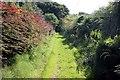 SJ4749 : Footpath to Kidnal Hill by Jeff Buck