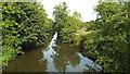 TQ6748 : River Medway at Branbridges, East Peckham by Malc McDonald
