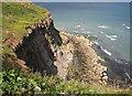 NZ9111 : Rocky shore near Saltwick Nab by Pauline E