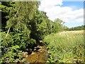 NZ2455 : River Team beside Cooper Wood by Robert Graham