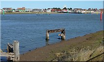 TG5107 : Turn left for the River Bure by Christine Johnstone