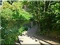 TQ0380 : Orange Way after Wiltshire (487) by Shazz