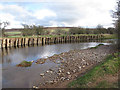 NT9929 : Wooden piles on Wooler Water by Stephen Craven